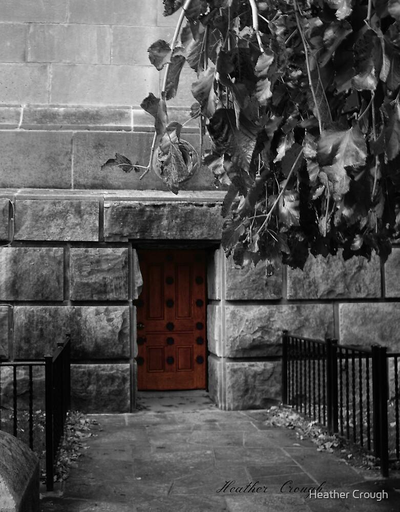 The Door by Heather Crough