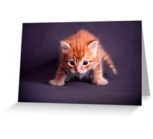 I am hungry! Greeting Card