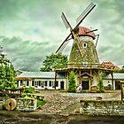 Saaremaa Windmill by Sue Martin