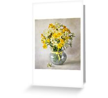 Spring Narcissus Greeting Card