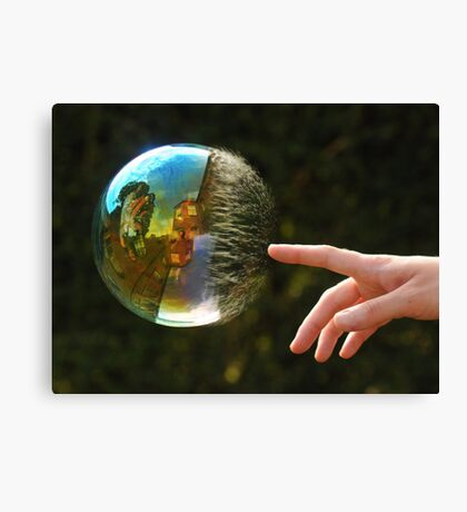 Reflection Perfection Canvas Print