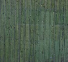 Green plank wall by Kristian Tuhkanen