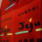 jeju welcomes you by emiliewho