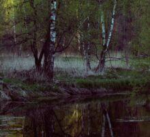 Forest swamp Sticker