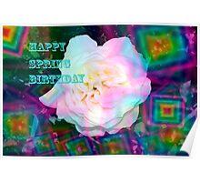 Diamond spring rose Poster