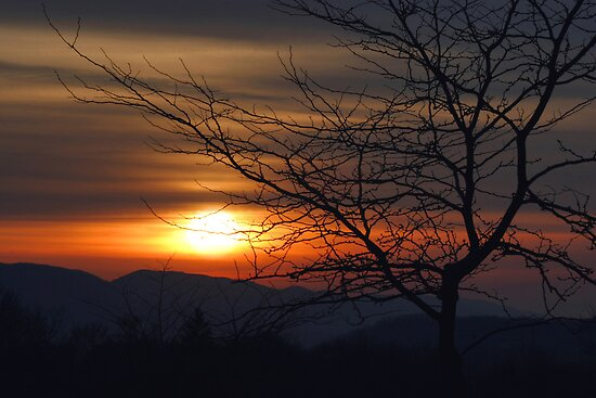 Winter Sunset Silhouette by Gene Walls