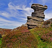 Salt Cellar, Derwent Edge by Pamsar