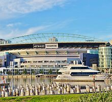 Etihad Stadium by domica48