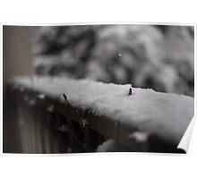 Balcony Snow Poster