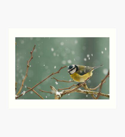 snowstorm survivor Art Print