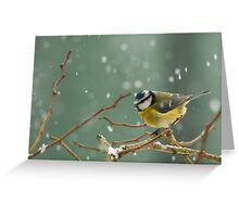 snowstorm survivor Greeting Card