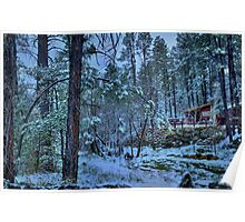Snowy Pines At Dusk Poster