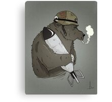 Wojtek Canvas Print