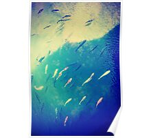 swim to the sky, variation 4 ( blue )  Poster