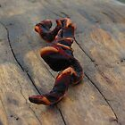 driftwood snake by Alex Call