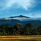 Pico on a Clear Day by A. Duncan