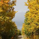 Autumn Travels by Kathi Arnell