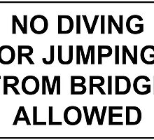 No Jumping or Diving from Bridge Allowed by TexasBarFight