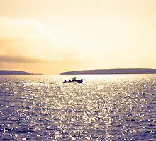 Lobster Boat by Elizabeth Thomas