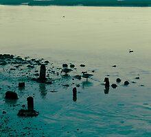 Yarmouth Harbor, Cape Cod, Massachusetts by Elizabeth Thomas