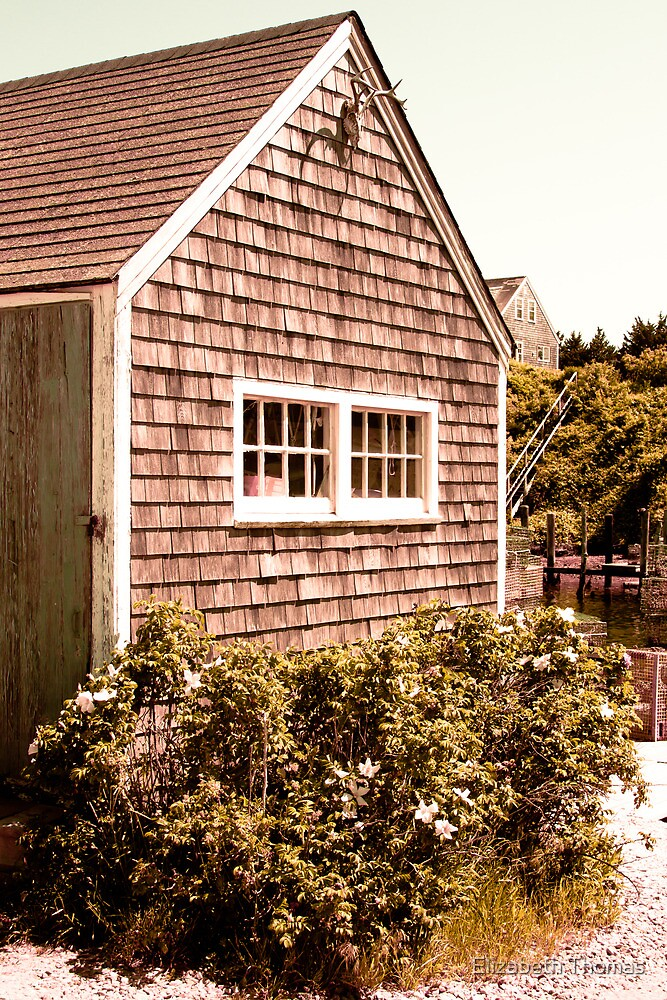 Martha's Vineyard Fishing Shack Massachusetts by Elizabeth Thomas