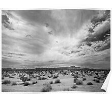 Mojave National Preserve Poster