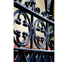 Gate Detail Photographic Print