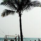 Beach Volleyballers by jlv-