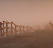 Fence in the Fog by Kathi Huff