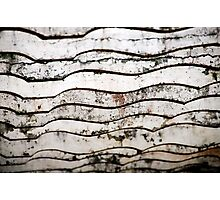 Wood Detail Photographic Print
