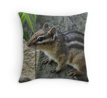 Little Chippy Throw Pillow