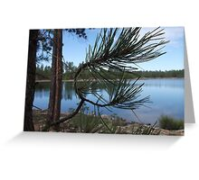 Willow Springs, Arizona - Natures Beauty Greeting Card