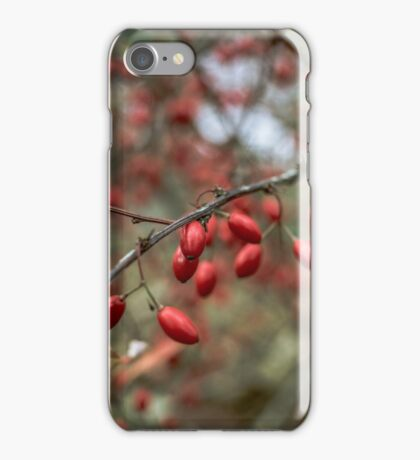 red nature lights iPhone Case/Skin