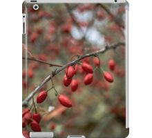 red nature lights iPad Case/Skin