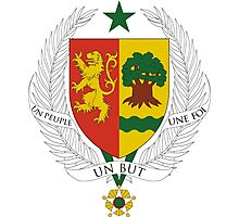 Senegal Coat of Arms Photographic Print