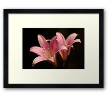 lilies hiding in my front garden Framed Print