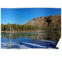 Lake, forest and mountains near Mammoth Lakes, California Poster