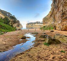 Limestone Coastline. by Warren  Patten