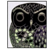 Serious Owl Photographic Print
