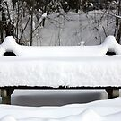 snowy bench by MelliCaster