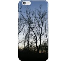 Forest Limbs  iPhone Case/Skin