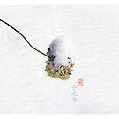 Winter Blanket  冬毛布 by 73553