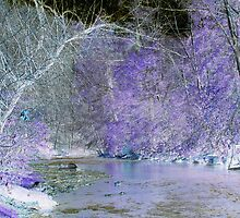 Riverside in Early Spring, Color Invert #2 by Paula Tohline  Calhoun