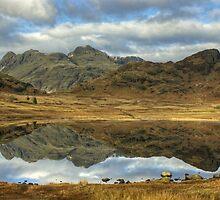 Blea Tarn,Langdale by Jamie  Green