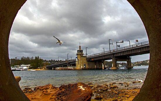 Spit bridge Sydney NSW by Doug Cliff