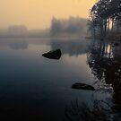 Foggy Blea Tarn by David Lewins