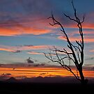 My sunset by Cathie Trimble