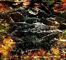 Cracks by IcyBC