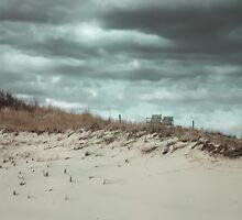 Beach Chairs, Sandy Neck Beach, Cape Cod by Elizabeth Thomas