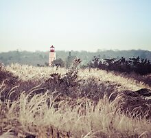 Sandy Neck Lighthouse, Barnstable, Cape Cod by Elizabeth Thomas